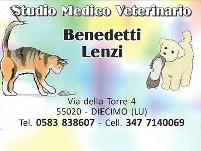 Studio Medico Veterinario Benedetti Lenzi